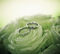 bryllupsfoto-346346